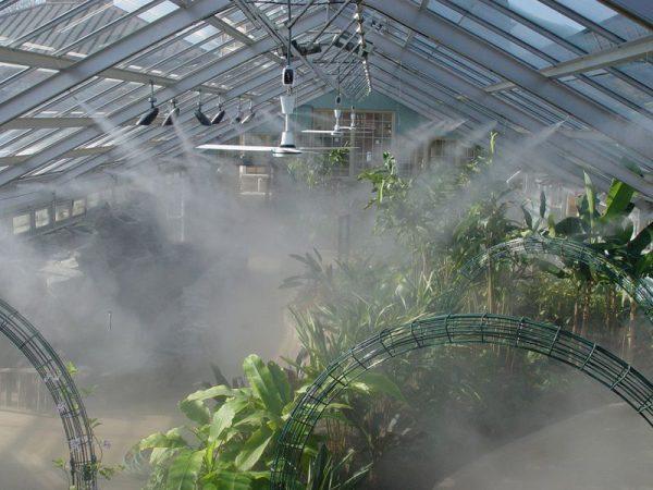 Lưu ý khi lắp đặt máy phun sương tưới lan