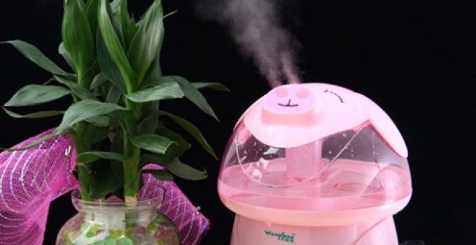 Cách sử dụng máy tạo ẩm không khí hiệu quả