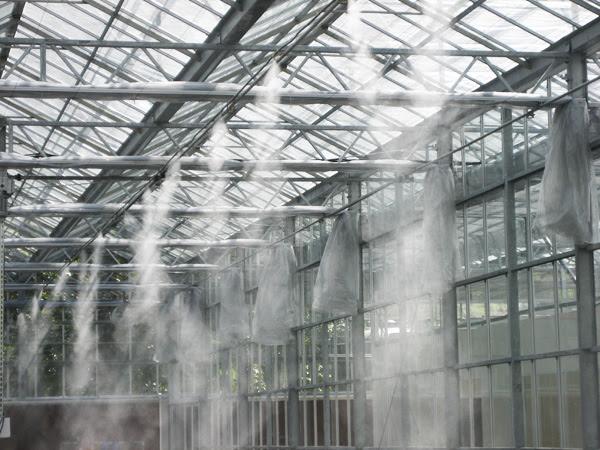 hệ thống máy phun sương